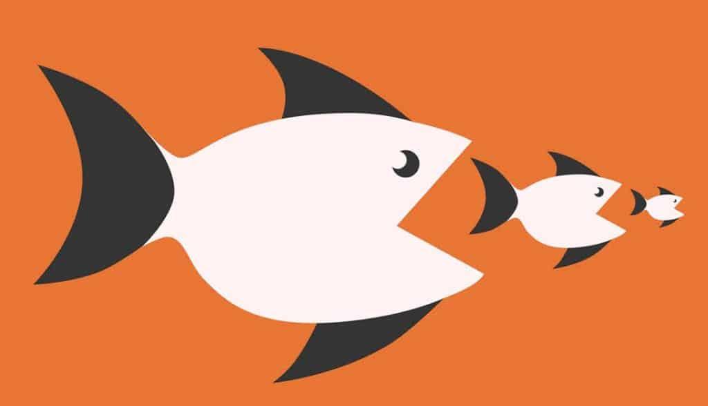 Cannibalisation Analysis large fish eating smaller fish